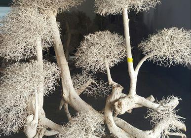 Pièces uniques - dried tree - DÉCORAMA