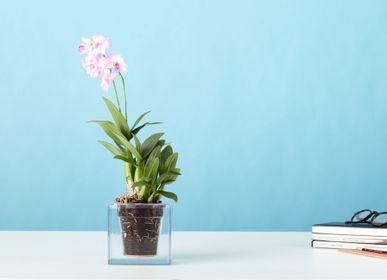 Flower pots - Boskke Cube 3 Small - BOSKKE