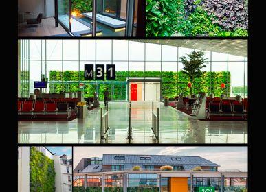 Green walls - Vertiss + - VERTISS BY NOVINTISS