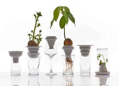Loisirs créatifs - Plantation - PLANTATION / ALICJA PATANOWSKA
