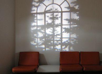 Optical illusion - REVEAL™  - ADAM FRANK INCORPORATED