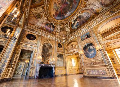 Boiserie - Boiserie d'Art de style Louis XIV - ATELIERS JEAN-BAPTISTE CHAPUIS