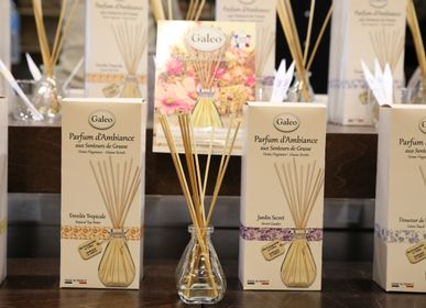 Scent diffusers - Fragrances Diffusers and Oils Scents - GALEO