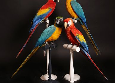 Decorative objects - Birds Sculpture - DESIGN & NATURE