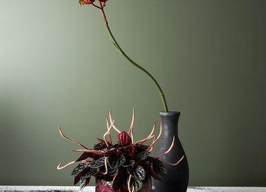 Floral decoration - Decoration Home & Garden  - AKSENT COLLECTION