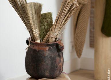Brushes - Balaillon - IXCASALA