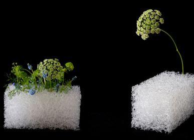 Floral decoration - MIYAVIE OASIS Vase - MIYAVIE MAISON KOICHIRO KIMURA