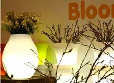 Pots de fleurs - pot d'ampoule - BLOOM