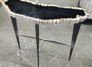 Console tables - Petrified wood console - WILD-HERITAGE.COM