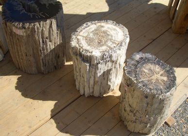 Office seating - Petrified wood stool - WILD-HERITAGE.COM