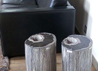 Assises pour bureau - Tabouret bois petrifié - WILD-HERITAGE.COM