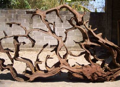 Design objects - Root sculpture - WILD-HERITAGE.COM