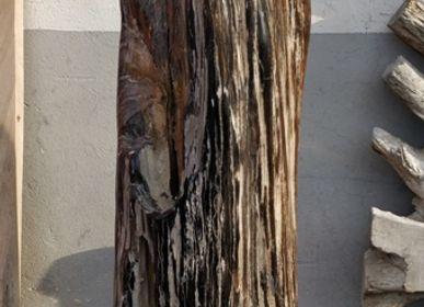 Objets design - sculpture bois petrifie - WILD-HERITAGE.COM