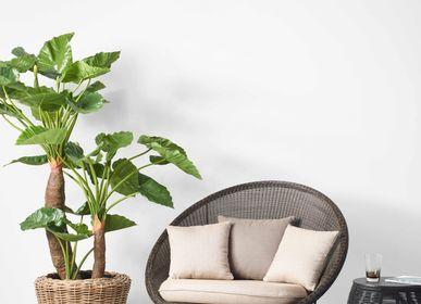 Chaises de jardin - Gipsy lounge - VINCENT SHEPPARD