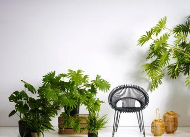 Chaises de jardin - Roxy - VINCENT SHEPPARD