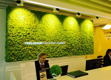 Office design and planning - Preserved Green Wall - Forest - GREEN MOOD