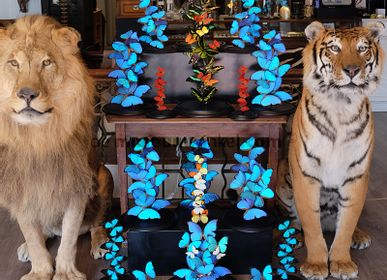 Unique pieces - Decorative object Interior design with the miracles of nature - DMW.NU: TAXIDERMY & INTERIOR