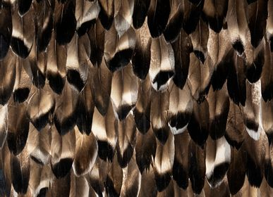 Wall coverings - Black Smoke Feathers - KOKET