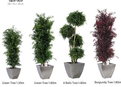 Decorative objects - Nicoly Trees - VIVA FLORA