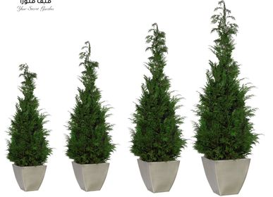 Decorative objects - Stardust Trees - VIVA FLORA