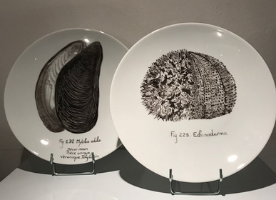 "Other wall decoration - Illustrated plates URCHIN and MUSSELS from the ""MER"" Collection - VERONIQUE JOLY-CORBIN"