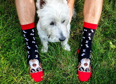 Chaussettes - Arty Socks Dogs - PIRIN HILL