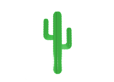 Decorative objects - GREEN WALL CACTUS - LP DESIGN