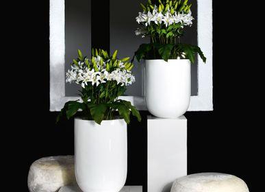 Floral decoration - Set Arrangements Medium - Medium Flower Compositions - VG - VGNEWTREND