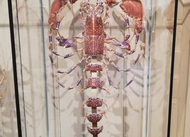 Decorative objects - Lobster Slapped - DESIGN & NATURE