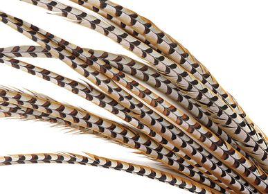 Objets de décoration - Plumes de faisan Reeves - décoration intérieure/article mode - DMW.NU: TAXIDERMY & INTERIOR