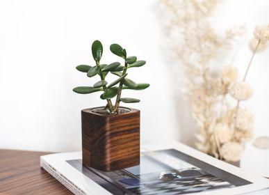 Vases - Wooden succulent planter - OAKYWOOD