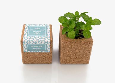 Objets connectés - Grow Cube - LIFE IN A BAG
