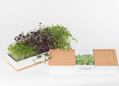 Smart objects - Grow Box Microgreens - LIFE IN A BAG