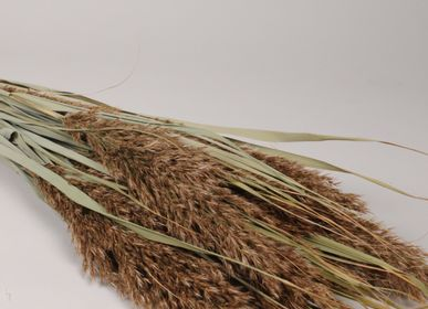 Floral decoration - Dried natural grass - LE COMPTOIR.COM