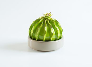 Objets de décoration - Cactus | Decorative Items - ARCUCCI TRADE SRL