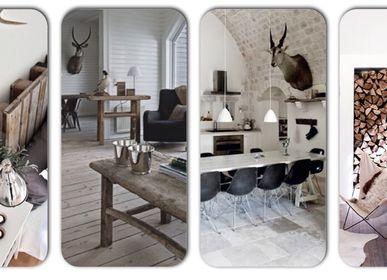 Objets de décoration - Articles de décoration: cornes, crânes de bois, taxidermie - DMW.NU: TAXIDERMY & INTERIOR