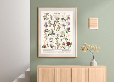 Poster - POSTER/FLOWERS - LES JOLIES PLANCHES