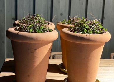 Flower pots - Gooooo OTO mini - GOOOOO