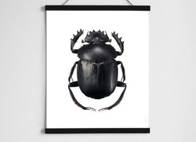 Children's bedrooms - Scarab beetle in black hanger - LILJEBERGS