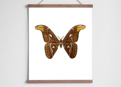 Children's bedrooms - Moth in oak hanger - LILJEBERGS