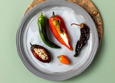 Assiettes au quotidien - Assiette plate à dîner en céramique recyclée  - 26 cm - REVOL
