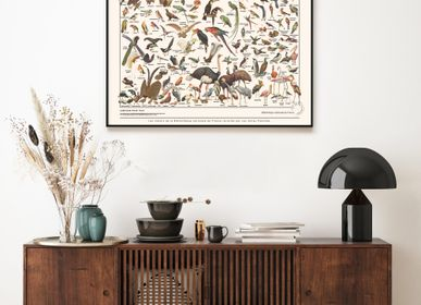 Wall decoration - Posters / Nature nostalgia - LES JOLIES PLANCHES