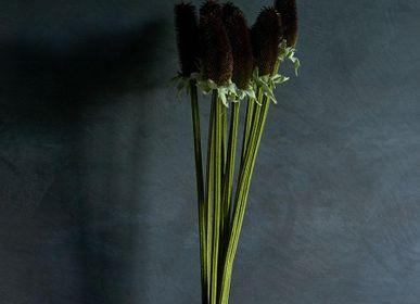 Décoration florale - GOUSSE DE GRAINES - ABIGAIL AHERN