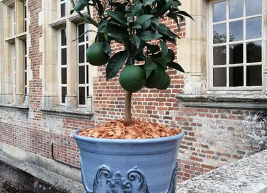 Flower pots - Executive Board Grand Siècle - MANUFACTURE NORMAND