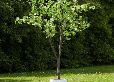Floral decoration - GINKO Floral Decoration - LOU DE CASTELLANE