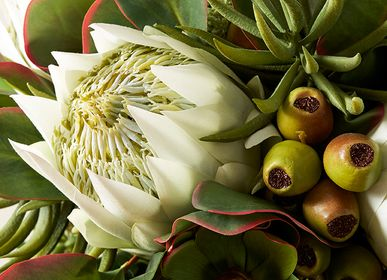 Floral decoration - PROTEA - LOU DE CASTELLANE