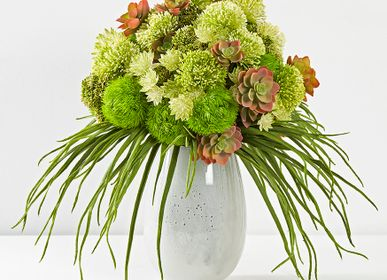 Floral decoration - VEGETAL COMPOSITION - LOU DE CASTELLANE