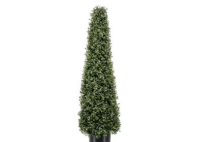 Garden accessories - UV-Collection - Boxwood Mini Leaf Pyramid 80cm - EMERALD ETERNAL GREEN BV