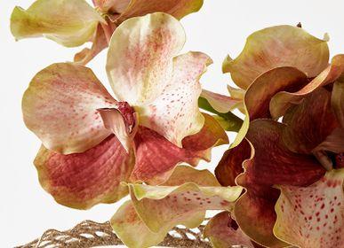 Décorations florales - Décoration florale VANDA - LOU DE CASTELLANE
