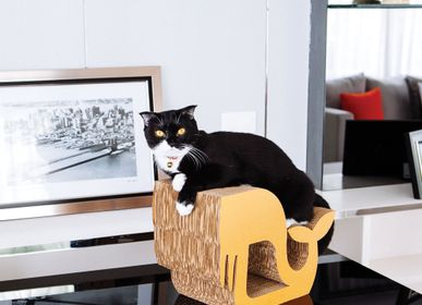 Pet accessories - WALRUS BROWN S - KAFBO